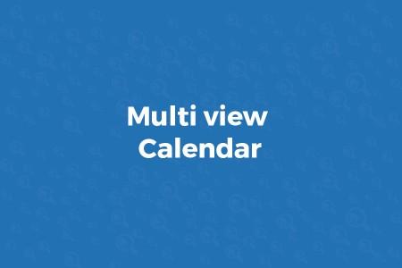 multi view calendar